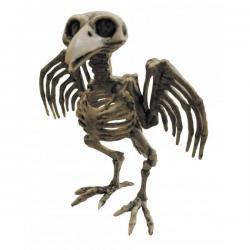 Halloween : décoration squelette de corbeau
