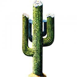 Décoration cactus en carton pas cher