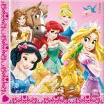 Déguisements Serviettes Anniversaire Princesses