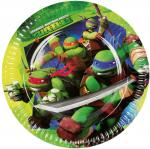 Grandes Assiettes Anniversaire Tortues Ninja