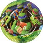 Petites Assiettes Anniversaire Tortues Ninja