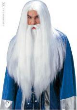 perruque sorcier adulte