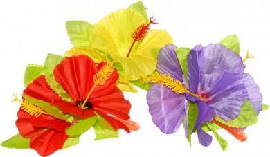 fleur hawaienne sur clip