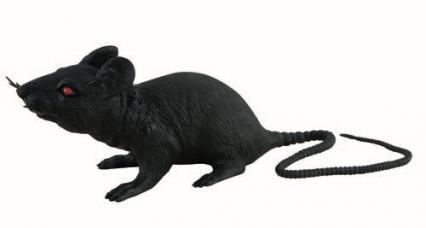 rat plastique