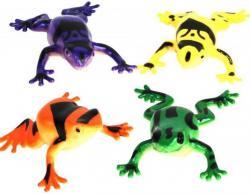 Animal grenouille lance eau