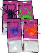 araignée géante de couleur