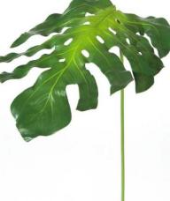 feuille de monstera artificielle