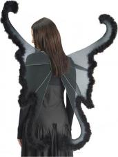 ailes de papillon noir geantes