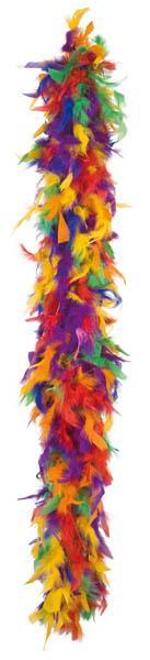 Boa Plume Multicolore