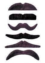 Moustache / 24