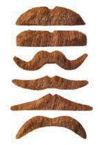 Moustache / 12