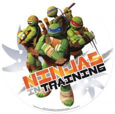 disque en sucre tortues ninja