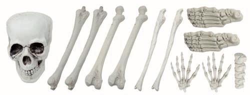 sac d os avec crane