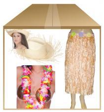 deguisement hawaienne femme