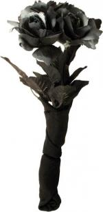 Déguisements Bouquet de roses noires