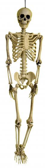 Déguisements Squelette 3 D réaliste