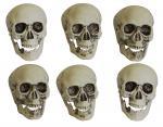 Déguisements Sachet de 6 crânes plastique