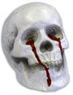Déguisements Crâne Polystyrène avec Sang