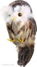 décoration hibou plumes