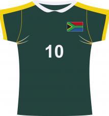 decoration maillot afrique du sud de rugby