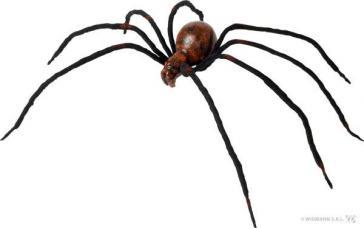 araignée sanglante