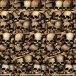 Déguisements Décor Catacombes Crânes
