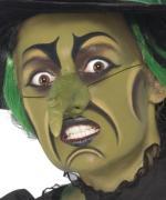 Maquillage Sorcière Femme Halloween