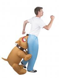 Déguisement gonflable chien pas cher