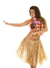Accessoires Hawaïen pas cher
