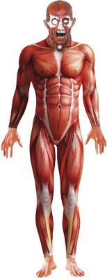 Déguisement Anatomy man combinaison pas cher
